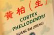 Naturheilpraxis Köln Sülz: Cornelia Günther, Heilpraktikerin mit Schwerpunkt Chinesische Medizin (TCM, Akupunktur, Heilkräuter